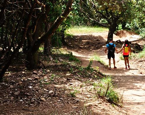 hiking montserrat love in the forest
